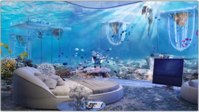 Photo of 03 Most Luxurious Underwater Hotel Rooms in the World